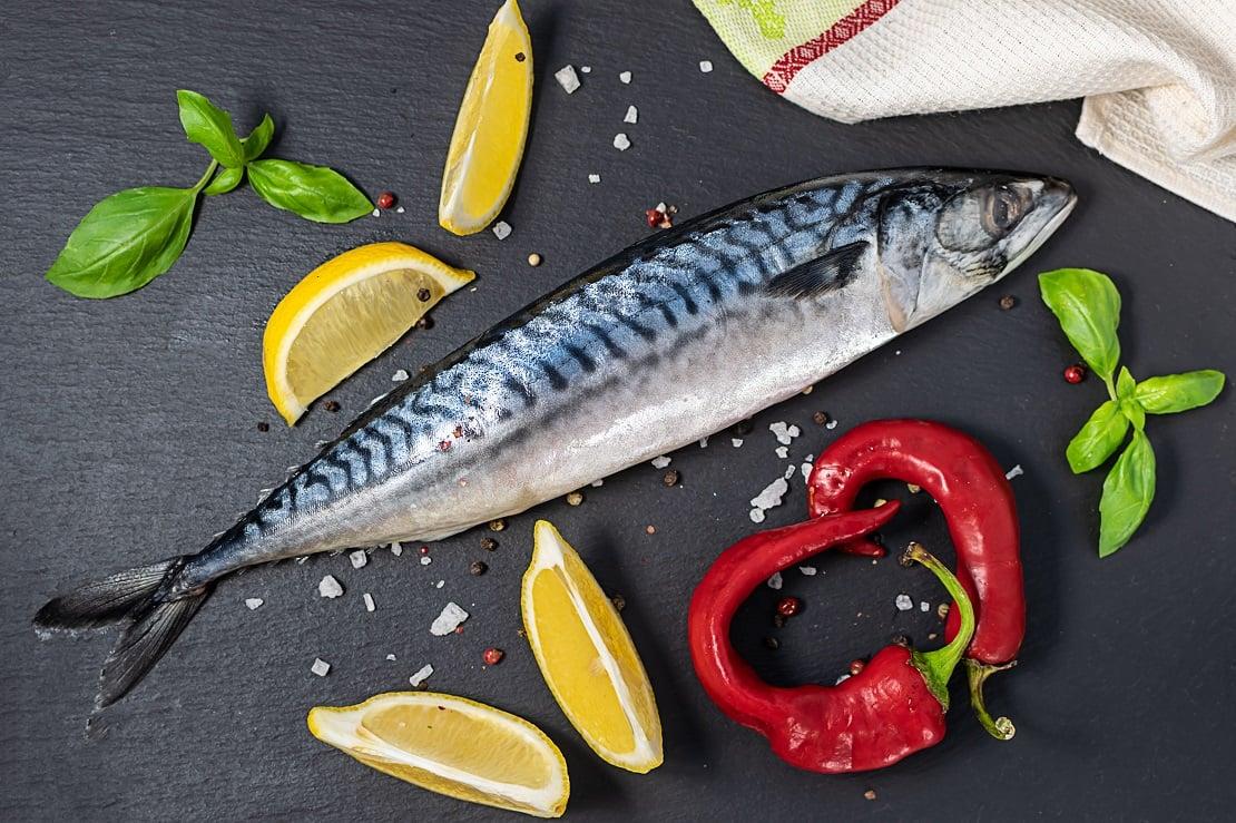 Ăn cá thu có tốt không? Lợi ích của cá thu và lưu ý quan trọng