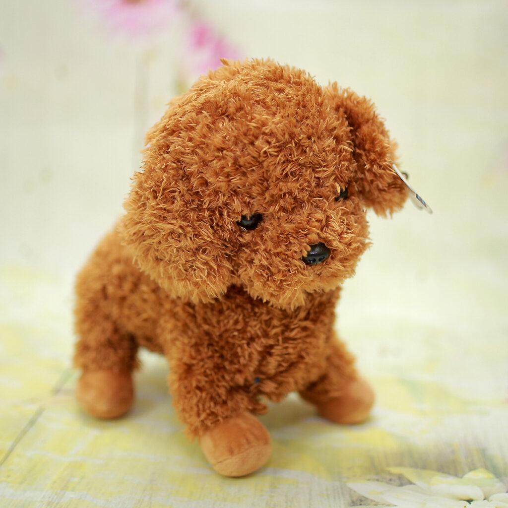 gấu bông chó